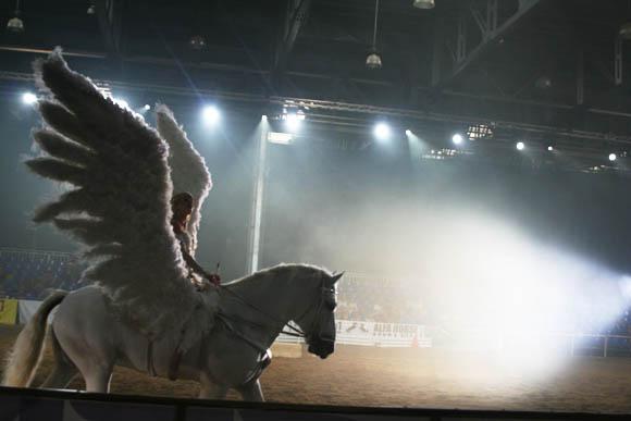 Фрагмент конного спектакля на выставке «ЭквиФорум 2010»