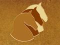 """ALPN участвует в международной выставке конной индустрии """"ЭквиФорум-2011"""""""