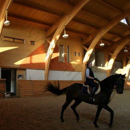 Лошадь на выездке